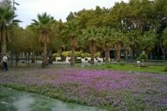 Malaga_ParqueSorpresas