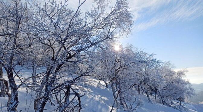 Ohlédnutí za letošní zimou objektivem našich výtvarníků